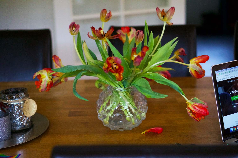 Tulpaner - Gör det fint på ditt hemmakontor