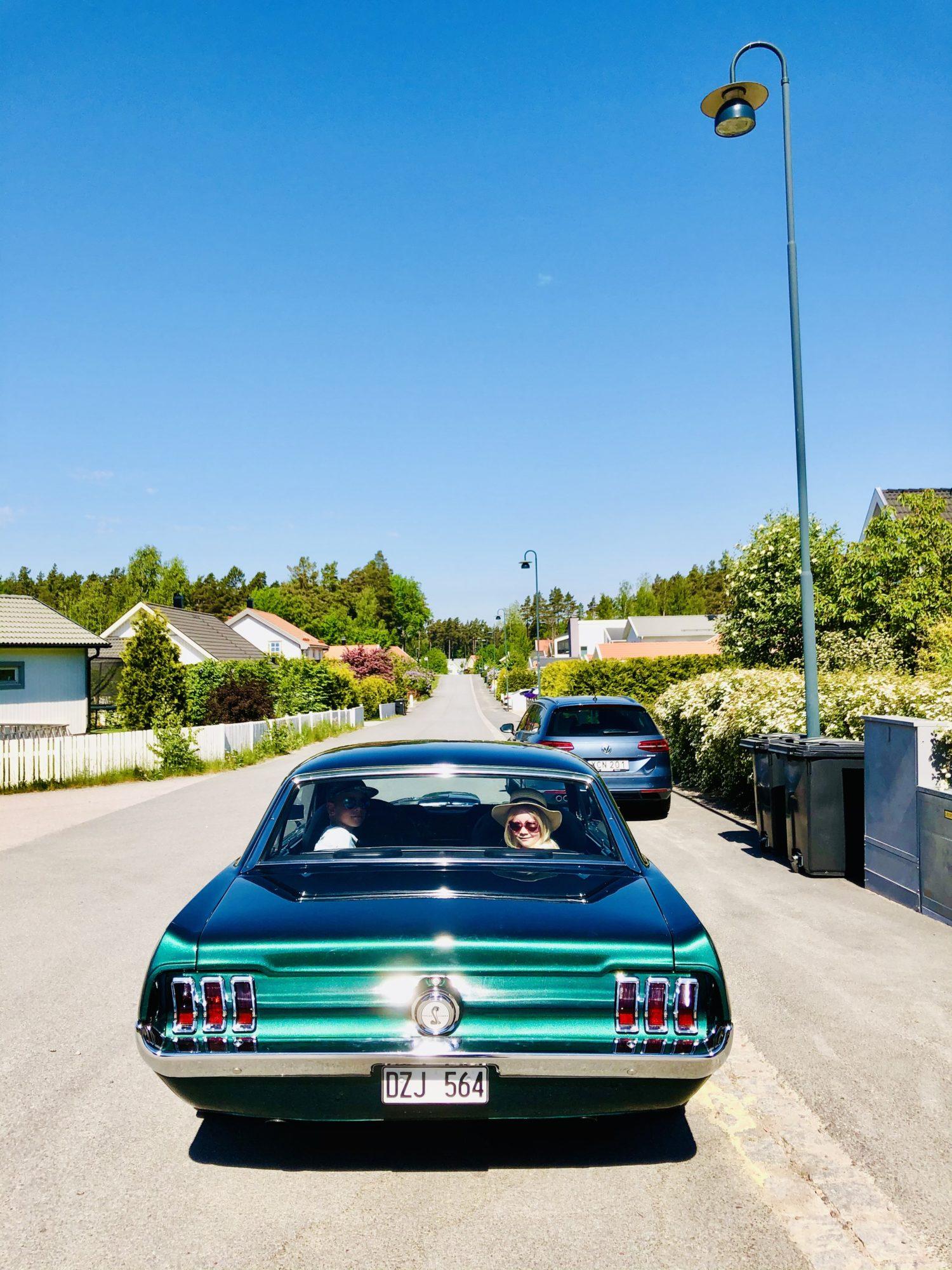 Mustang - ett sorgligt avsked